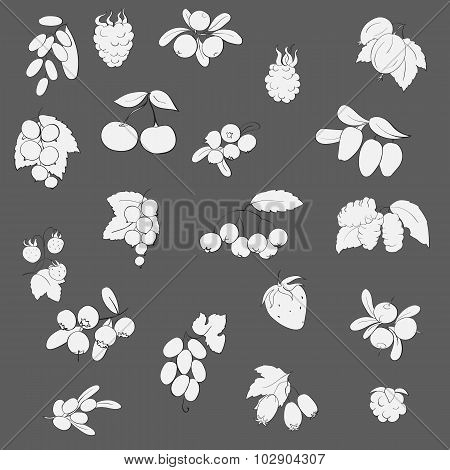 set fruits and berries graphics vector illustrationstrawberry raspberry currant barberry blueberries cranberries honeysuckle mulberry chokeberry sea buckthorn grapes strawberries hawthorn blackberries gooseberries cranberries