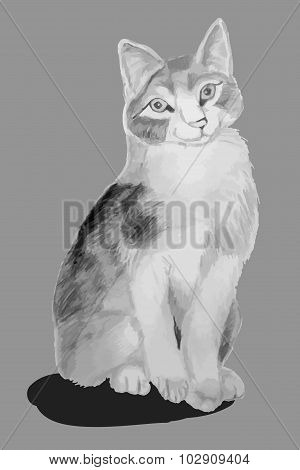 Cat Pencil Drawing Children's (gray)