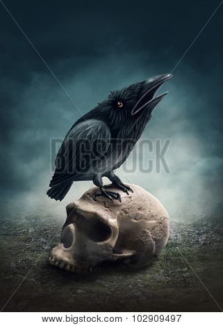 Black raven on the skull