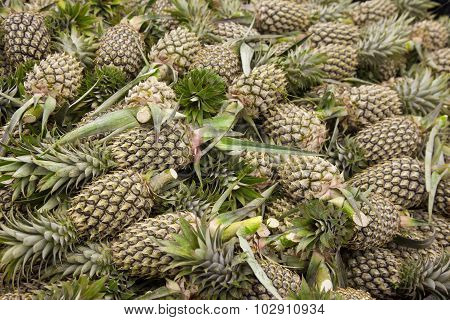 lot of pineapple