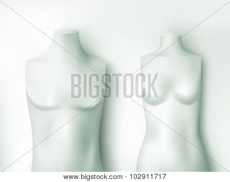 male and female torsos - vector illustration