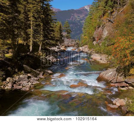 Rapid mountain stream of coniferous forests. Pastoral in the Alpine mountain valley in Austria. Cascades of cold water at the source of the famous Krimml waterfalls