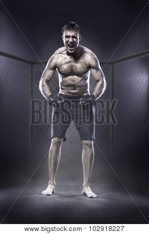 MMA fighter in cage