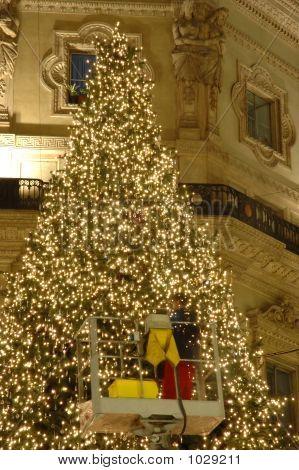 Working On Christmas Tree