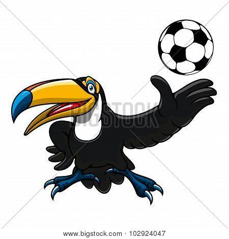 Cartoon toucan bird player with ball