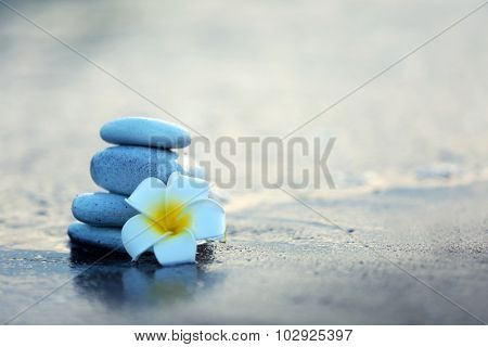 Spa stones with flower on sea beach outdoors