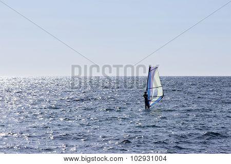 Windsurfing The Sea