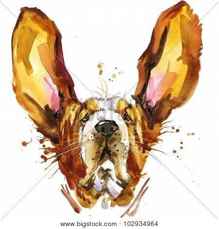 Funny dog basset fashion T-shirt graphics. dog illustration with splash watercolor textured  backgro