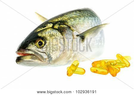 Fresh fish with vitamin D on the white background