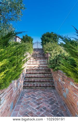 The Garden With Stairs In The Countryside In Cortona