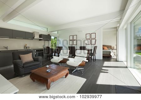 House, modern interiors, beautiful living room furnished