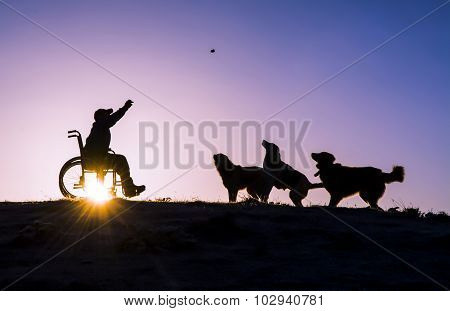 disabled man and dogs silhouette