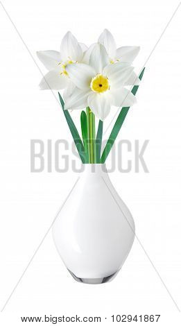White And Yellow Color Daffodil In Vase Isolated On White Background