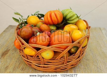 Basket with fresh tomatoes on a wooden table