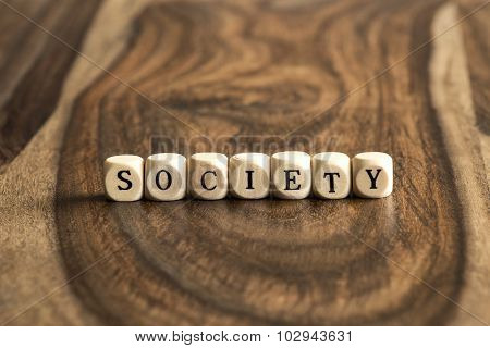Word Society On Wooden Cubes