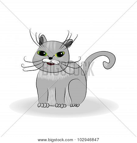 cute gray cat