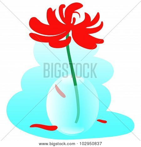 Glass Vase With Red Chrysanthemum
