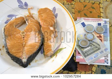 Valuable Salmon Fillet