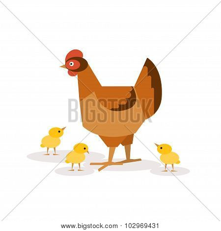 Chicken With Chickens. Vector Illustrations