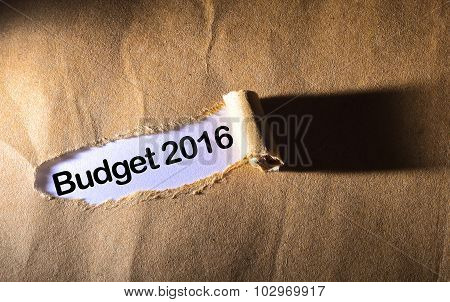 Torn Paper With Word Budget 2016