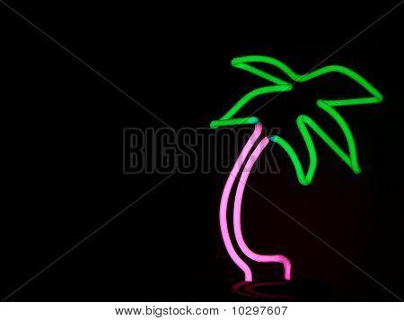 Dancing Palm Tree