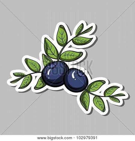 BlueberrySticker