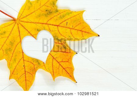 Maple Leaf With Heart Shape