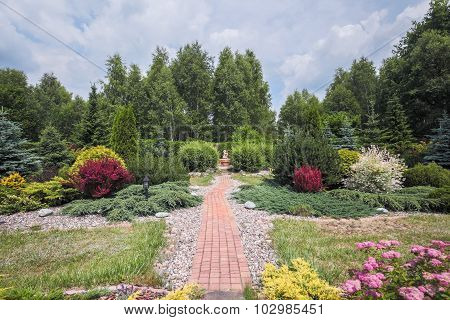 Beautiful Garden With Blooming Bushes