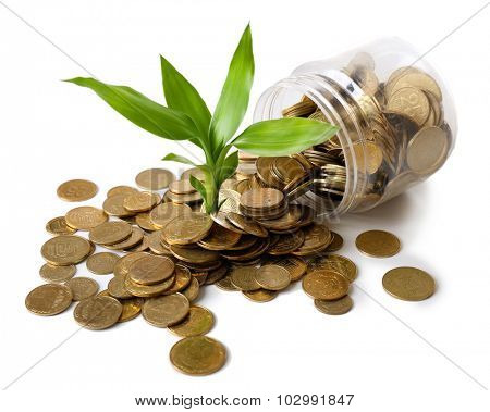 Plant growing in coins scattered from the bottle