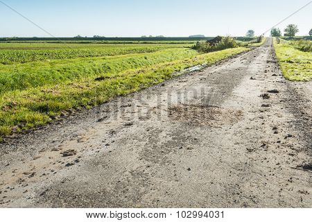 Muddy Agricultural Road In Early Morning Backlight