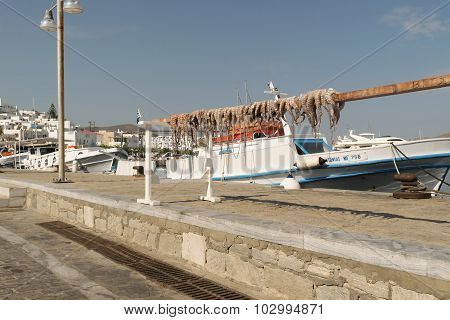 Paros, Greece, 15 August 2015. Octopus out in the sun to dry against the sea and a fishing boat.