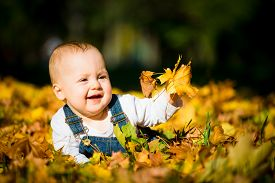 picture of crawl  - Beautiful baby crawling  in fallen leaves  - JPG
