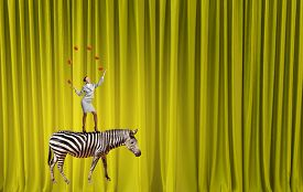image of juggling  - Young businesswoman standing on zebra and juggling with balls - JPG
