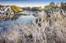 stock photo of novosibirsk  - The first frost - JPG