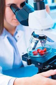 foto of pesticide  - checking food Strawberries - JPG
