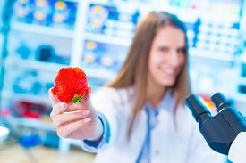 picture of pesticide  - checking food Strawberries - JPG