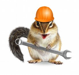 foto of laughable  - Funny handyman chipmunk worker with helmet and wrench isolated on white background - JPG
