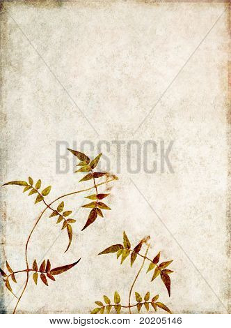beautiful light background image with interesting earthy texture and floral elements