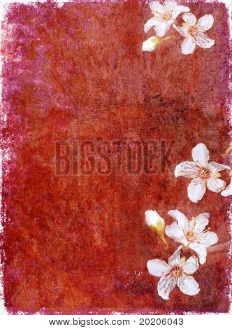 lovely red background image with interesting texture, floral elements and plenty of space for text