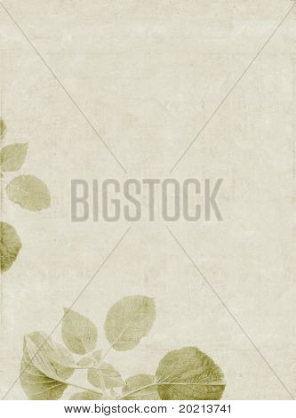 lovely light green background image with interesting texture, close-up of leaves and plenty of space for text