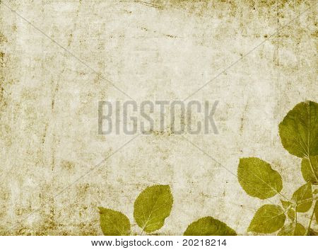 schöne braune Hintergrundbild mit interessanten erdig Textur, close-up von Blättern und reichlich spac