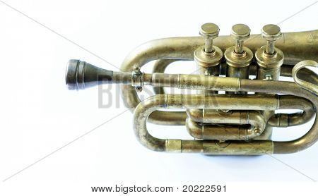 beautiful old trumpet against white background