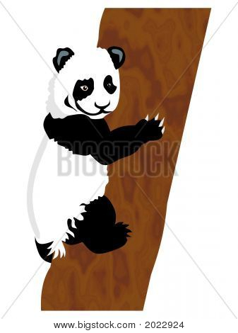 Panda_Bear