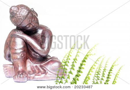 buddha and flora