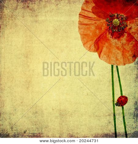 lovely background image with floral elements and ladybird. useful design element.