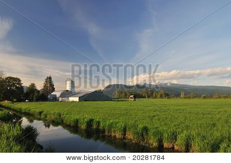 Farmland And Golden Ears Mountain