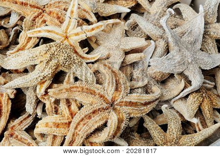 Chinese delicacy: starfish at Hong Kong seafood market