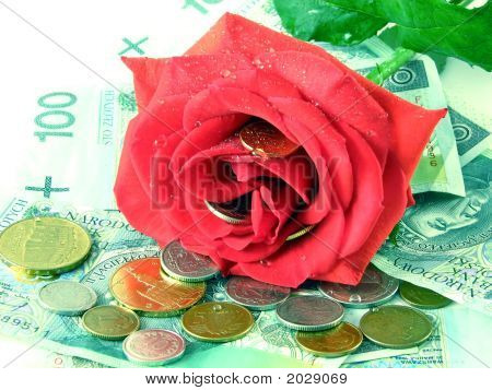 Money And Rose
