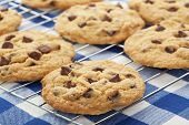 stock photo of chocolate-chip  - Warm golden brown chocolate chip cookies cooling on a rack - JPG