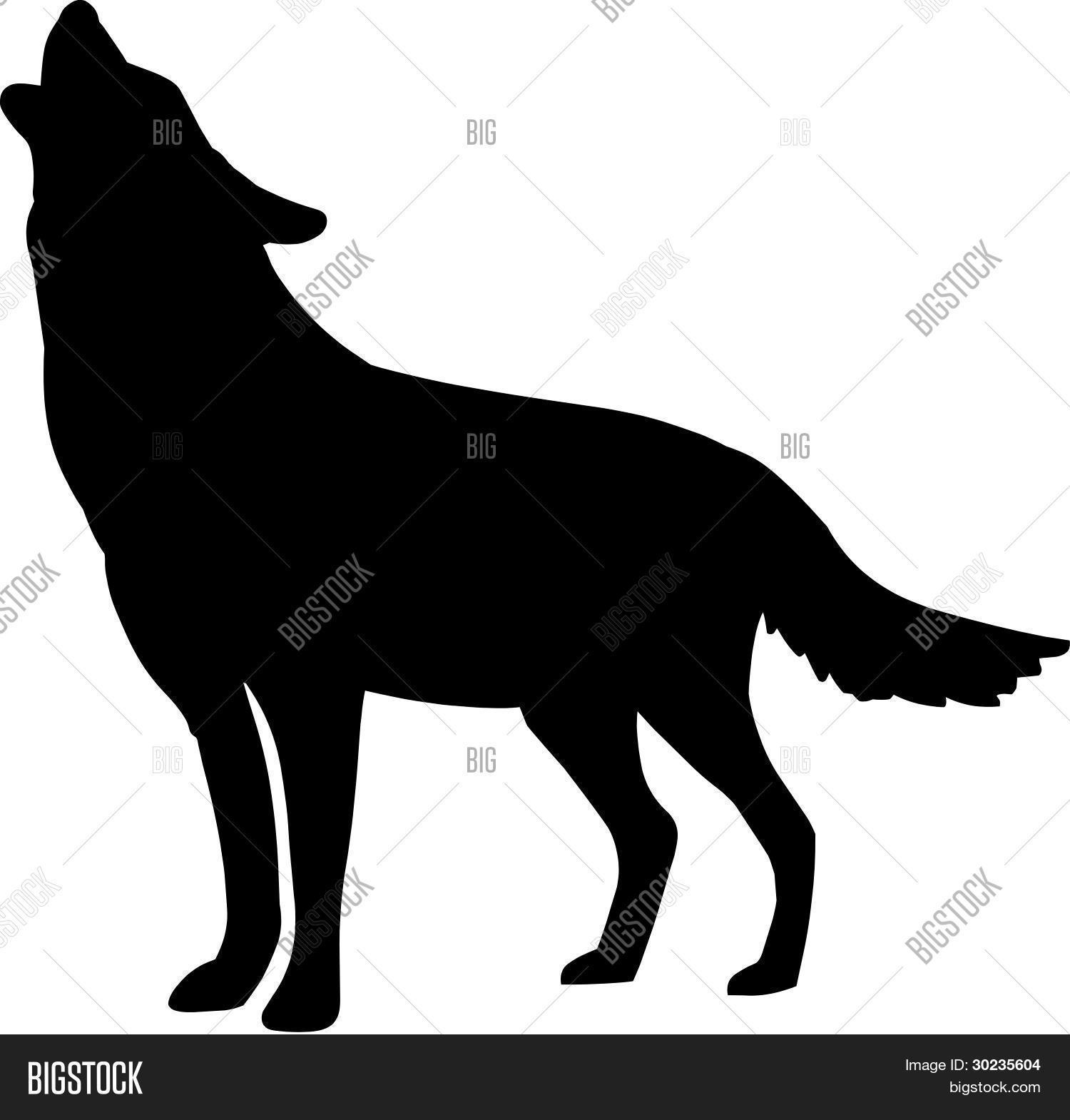 Howling Wolf Silhouette Stock Photos, Images, & Pictures ...
